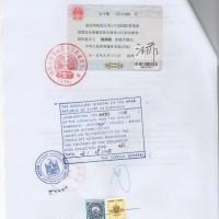 授权书LOA埃及领事馆盖章怎么办理吗?